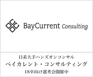 Baycurrent 336*280